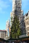 The main Christmas tree in the Marienplatz.