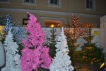 First time seeing a pink christmas tree.